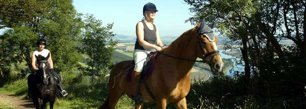 Horse Trekking In Perthshire